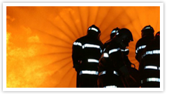 FIREMAN INDIA SECURITY SOLUTIONS